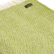 throw-beehive-kiwi
