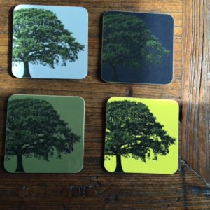 Tree coasters all
